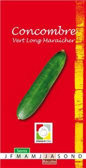 Semi di cetriolo verde lungo Maraicher