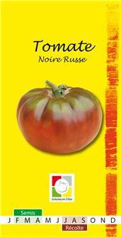 Semi di pomodoro nero russo