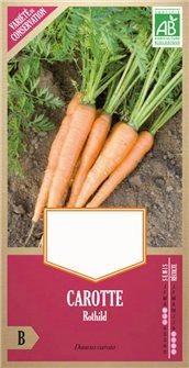 Semi di carote Rothild